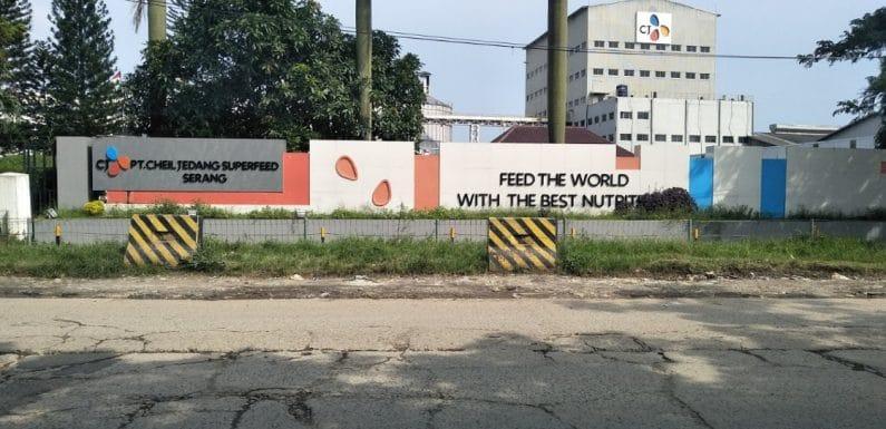 , Lowongan Kerja Di PT kino Penempatan Alam Sutera, INFO TANGERANG, INFO TANGERANG