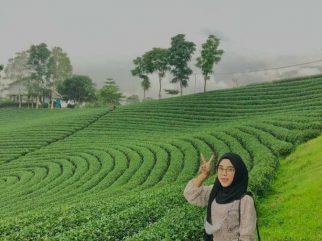Berlibur Di Tengah Hamparan  Keindahan Kebun Teh Cikuya Lebak-Banten